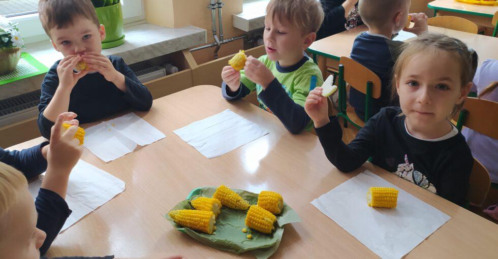 Wspólne degustowanie gotowanej kukurydzy.